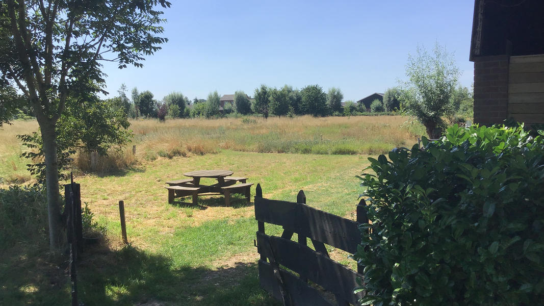 Mini campsite with swimming pond and fire places on the estate. With 2 ha of walking area. #18