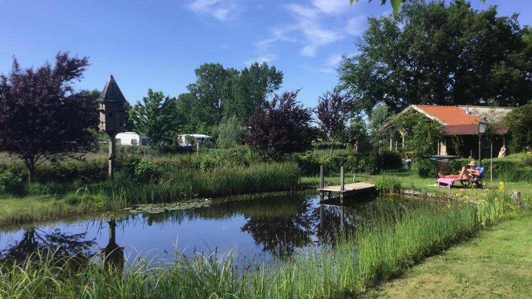 Mini campsite with swimming pond and fire places on the estate. With 2 ha of walking area. #31