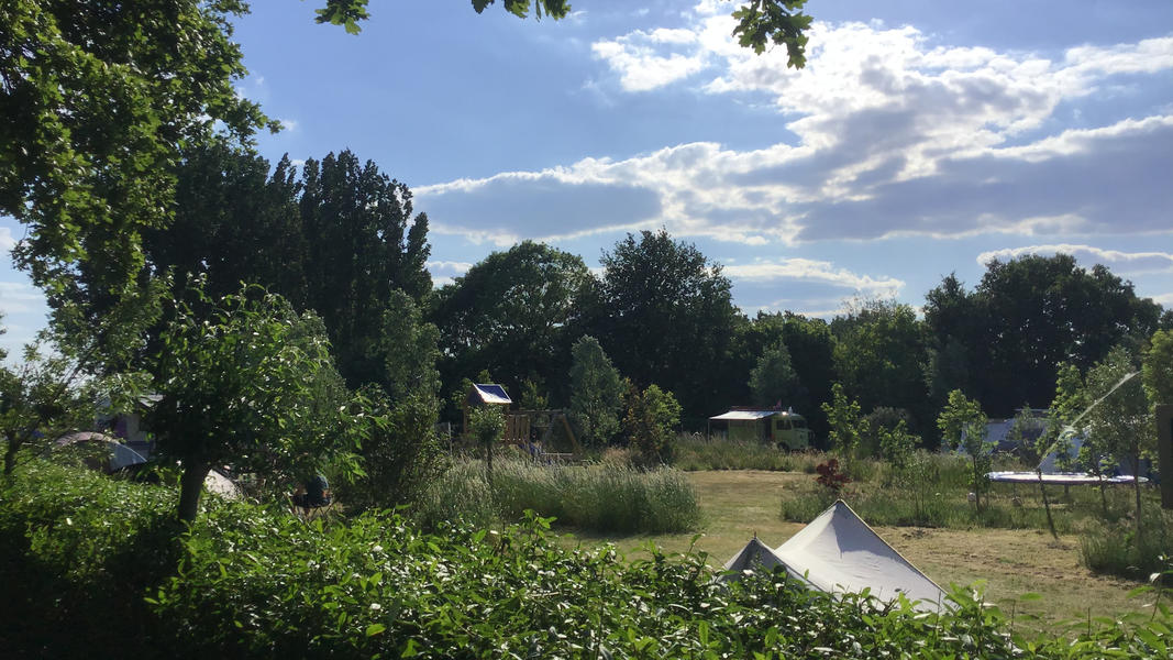 Mini campsite with swimming pond and fire places on the estate. With 2 ha of walking area. #38