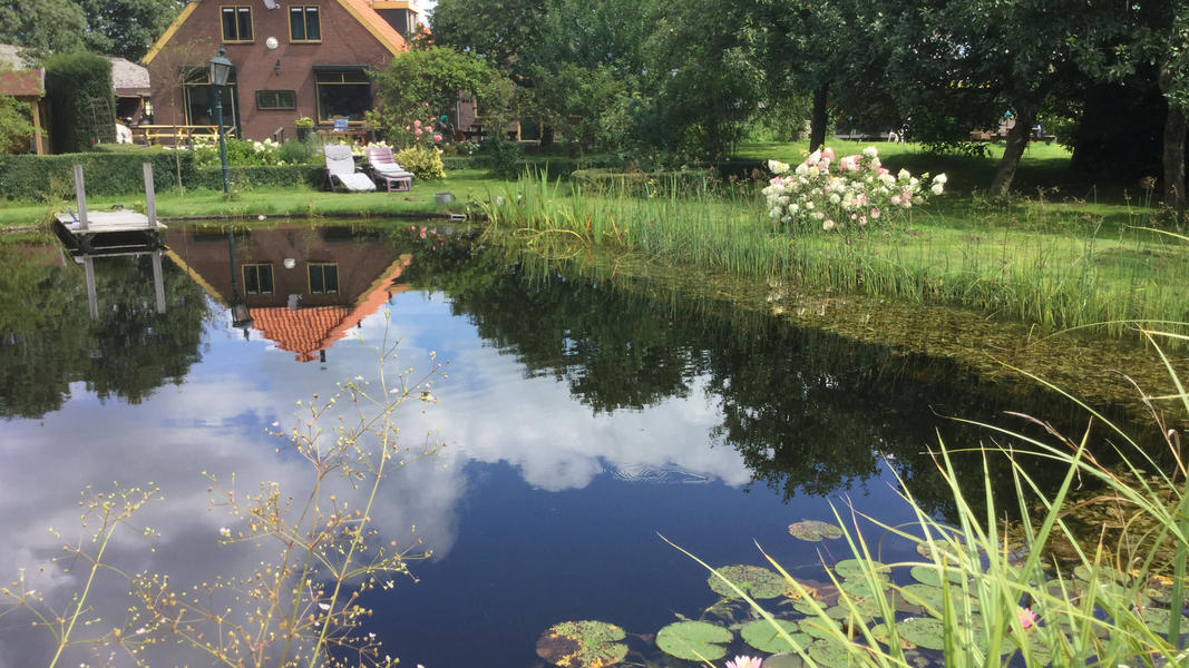 Mini campsite with swimming pond and fire places on the estate. With 2 ha of walking area. #6