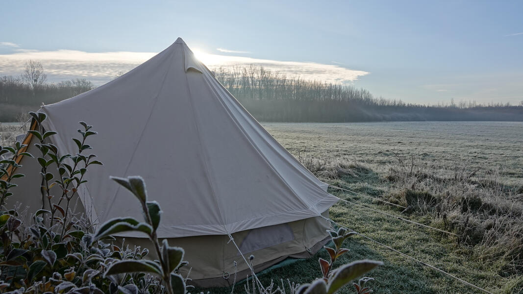 Glamping, glamorous camping in a nature reserve, in a nature reserve #1