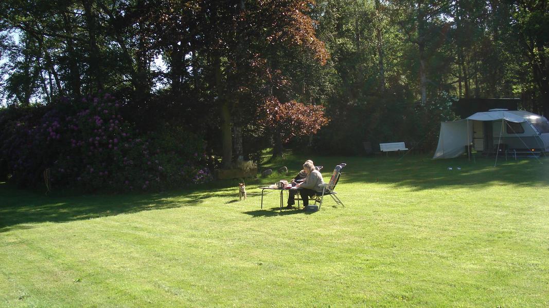 Camper place in a beautiful park garden. #4