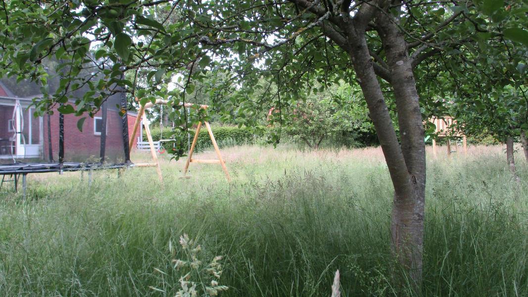 Forest, sea, beach and farmland-Pitch 3 #2