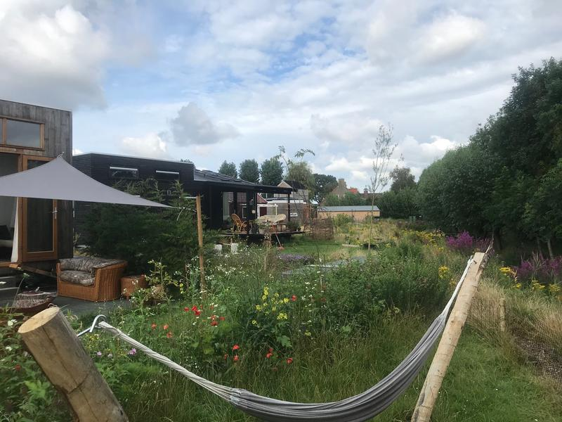 Camping on a Tiny House field near Delft #4