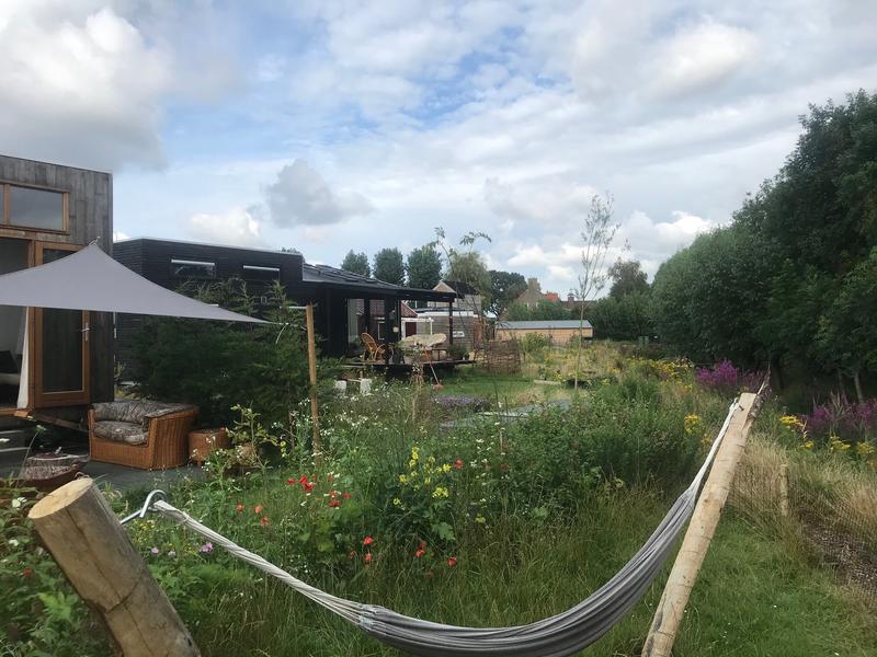 Camping near Delft #4