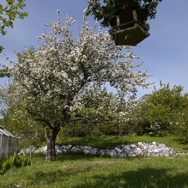 Andreas' Gardencamping #2