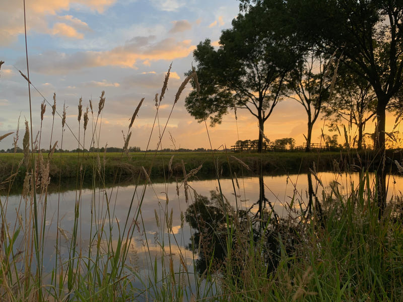 Relax on a farm in the middle of the Alblasserwaard polder #10