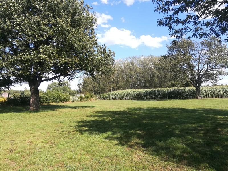 Idyllisches Zelten mitten auf den Feldern #7