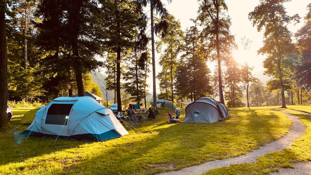 Rent a pitch in beautifull forest by the Alpine river Savinja #9