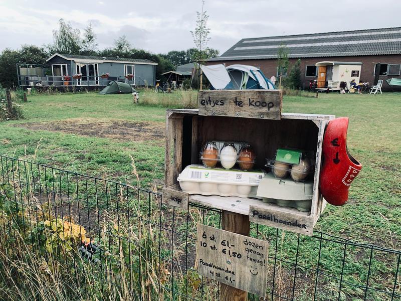 Mini farm campsite #7