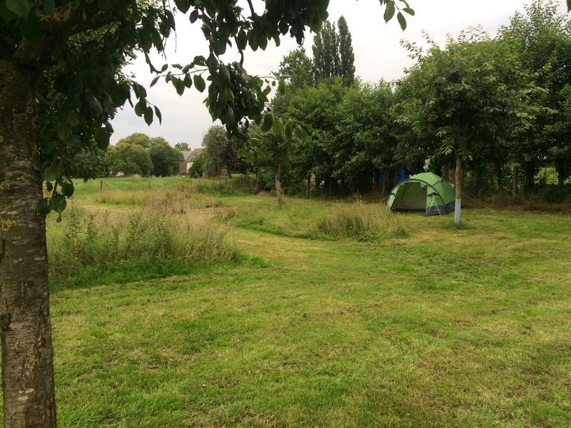 Mooi plekje in de boomgaard aan de dijk #3