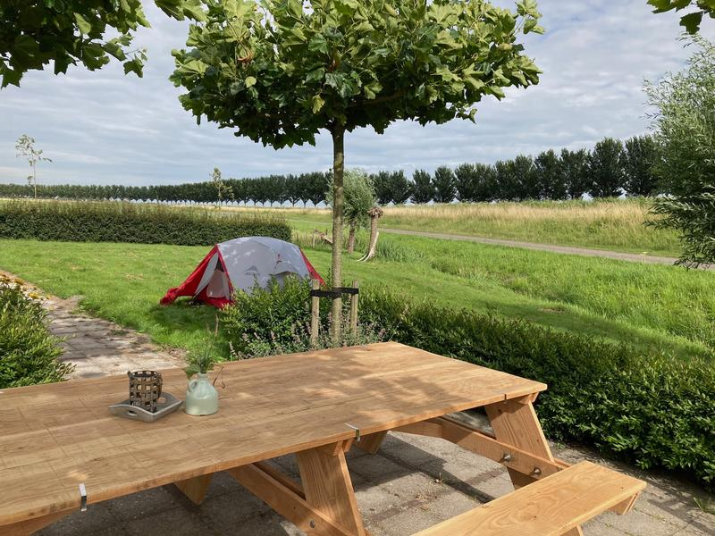 Wonderful micro camping on a care farm in the polder #10