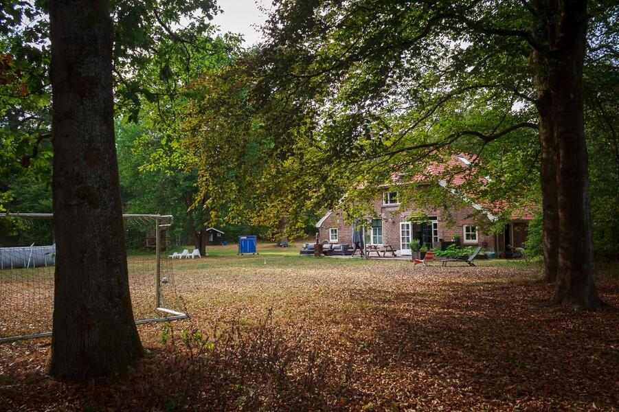 Camping in the woods at National Park 'de Hoge Veluwe' #9