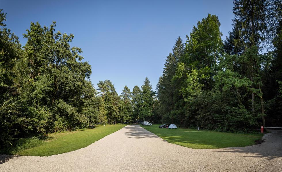 Rent a pitch in beautifull forest by the Alpine river Savinja #8