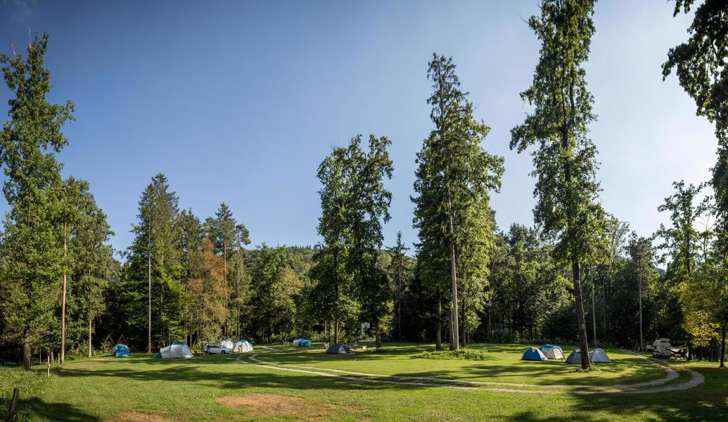 Rent a pitch in beautifull forest by the Alpine river Savinja #2