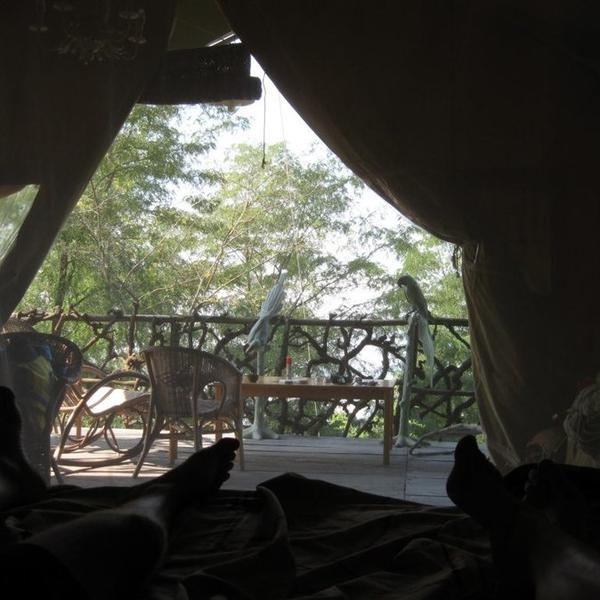 Waking up by the bray of the donkeys in Safari tent Benjamino #4