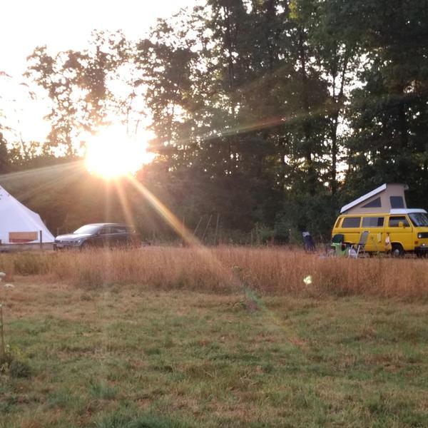 Idyllic campsite near the forest #5