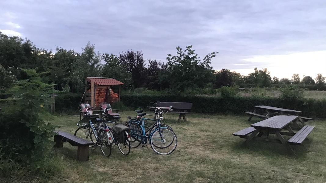 Camper plek op landgoed met zwemvijver, vuurplaatsen en 2ha wandelgebied #36
