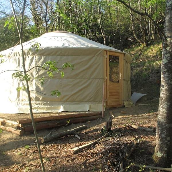 Sillico Campspace, Wild camping Paladini in the Tuscan Apennines #4