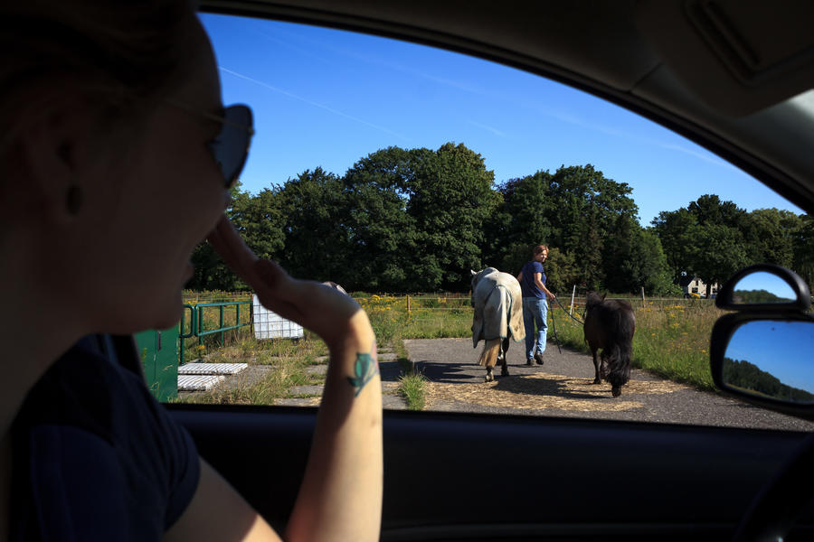Take your horse to our micro camping #9
