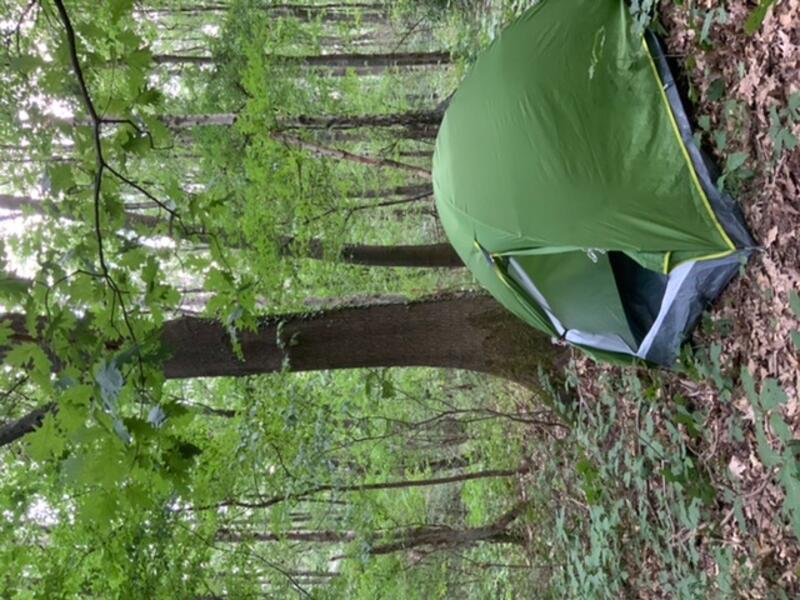 Into the wilderness - camping on unfenced land in the middle of a nature reserve #1