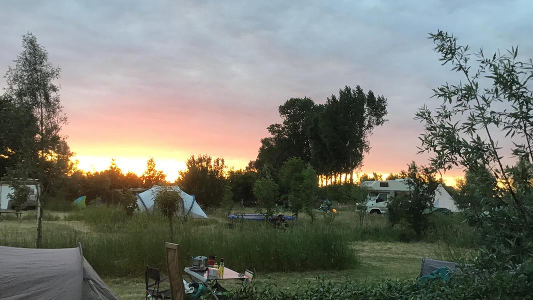 Camper plek op landgoed met zwemvijver, vuurplaatsen en 2ha wandelgebied #32