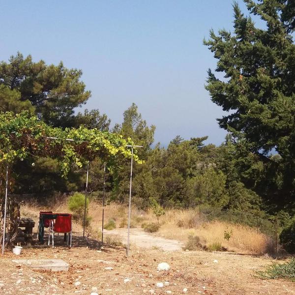 Ifigenia's micro camping #4