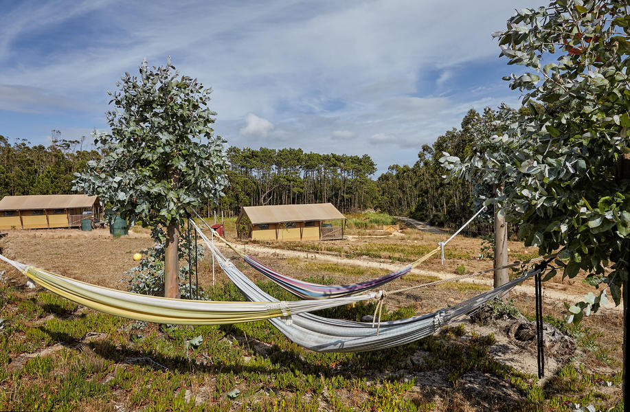 Small-scale ecological glamping on the Silver Coast. #3
