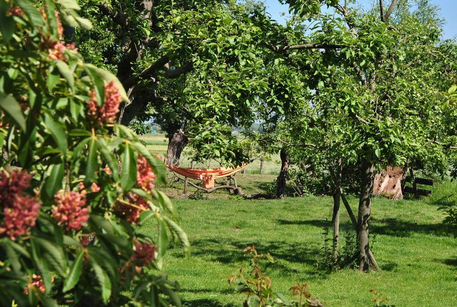 Een oase tussen de weilanden van Midden Delfland! #11