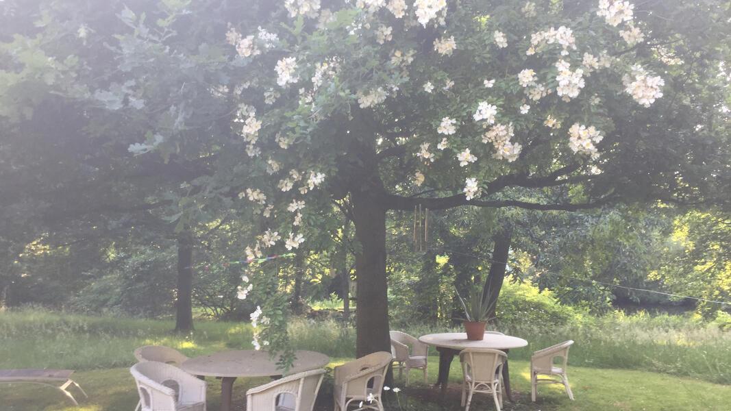 Prachtige ecologische tuin dicht bij Brugge #1