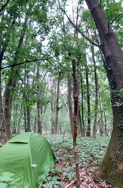 Into the wilderness - camping on unfenced land in the middle of a nature reserve #2