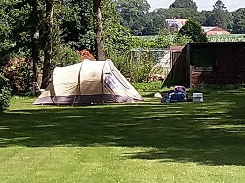 Camping holiday place in a beautiful park garden. #5