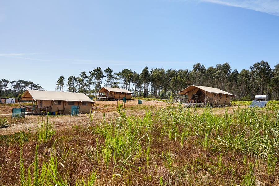 Small-scale ecological glamping on the Silver Coast. #9