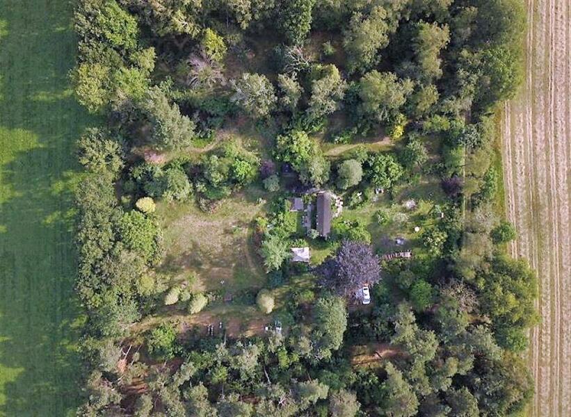 Off-grid - Ecobobo on the edge of the Loonse- en Drunense Duinen (DW) nature park #9