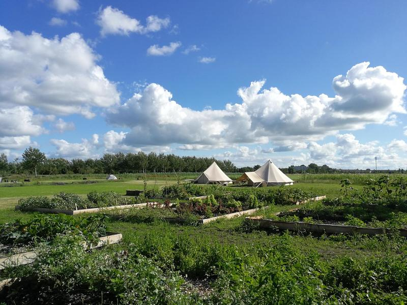 Cosily furnished Bell tent on an eco mini campsite on the outskirts of Sneek #3