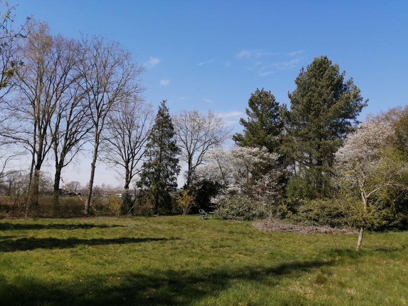 Offgrid - Ecobobo on the edge of the Loonse- en Drunense Duinen (TT) nature park #4