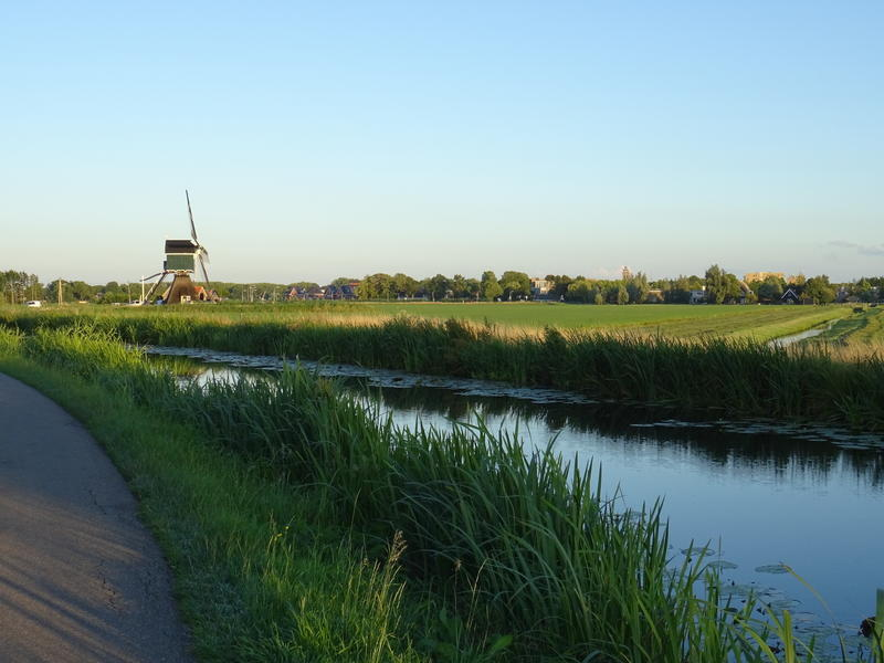Idyllic camper place in the middle of the polder, with lots of peace and space #11