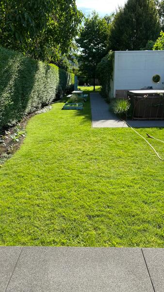 de tuin van het dameshuis in Westerlo! GR5 #1