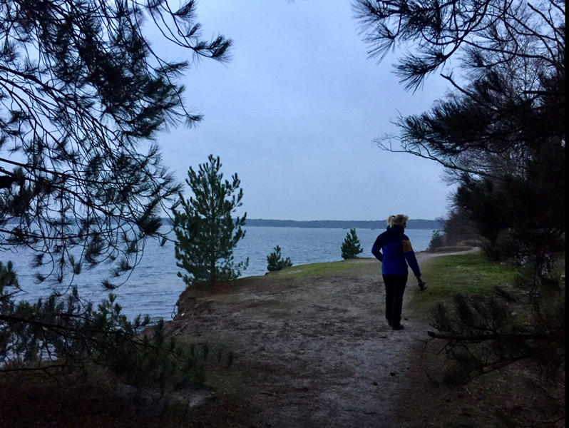 In the green heart of the Kempen near # nature reserves, Molse sand pits, Zilvermeer ... #14