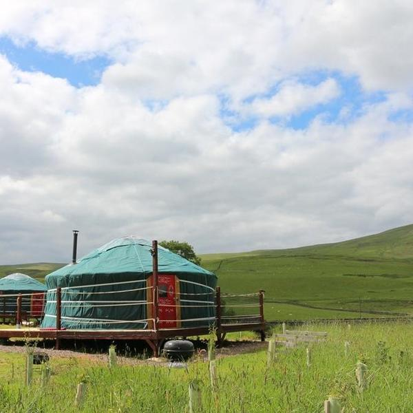 Authentic Mongolian Yurt Glamping In The Beautiful Ettrick Valley #3