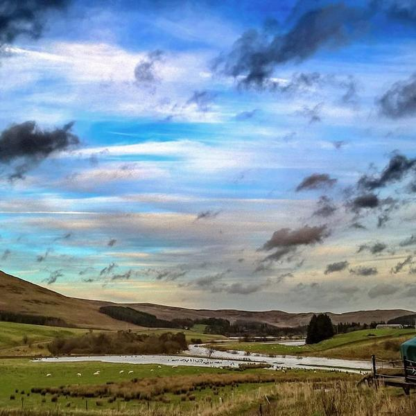 Authentic Mongolian Yurt Glamping In The Beautiful Ettrick Valley #4