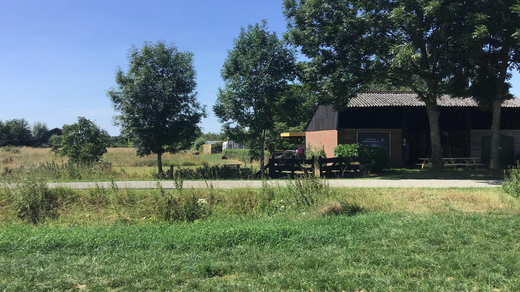 Camper plek op landgoed met zwemvijver, vuurplaatsen en 2ha wandelgebied #14