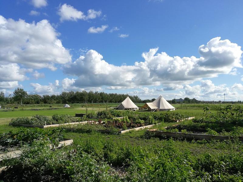 Ingerichte Bell tent bij stadsboerderij aan de rand van Sneek #2