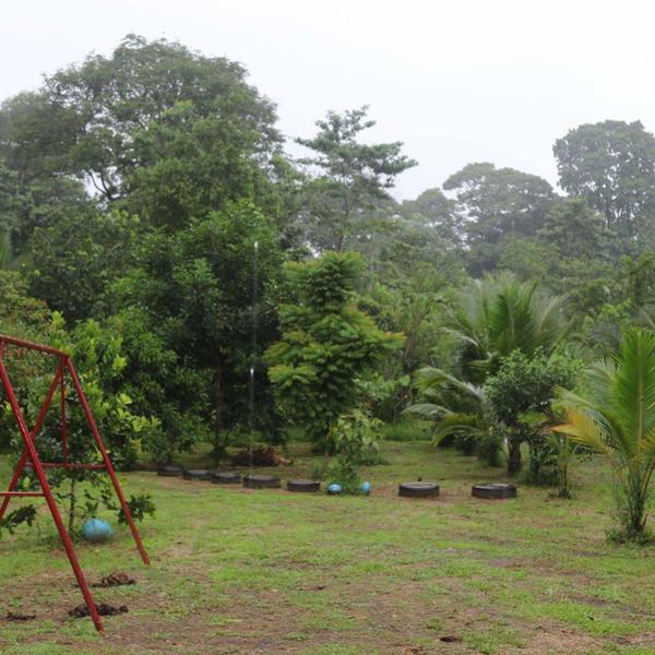 A naturalist garden near the tropical rain forest #3