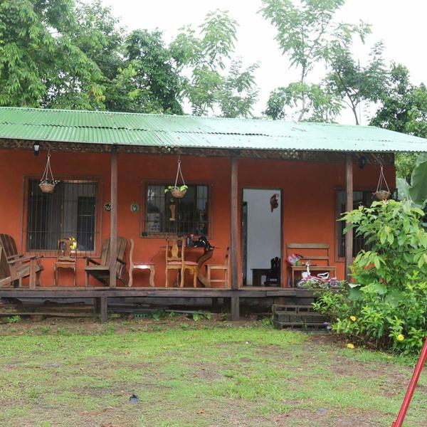A naturalist garden near the tropical rain forest #4