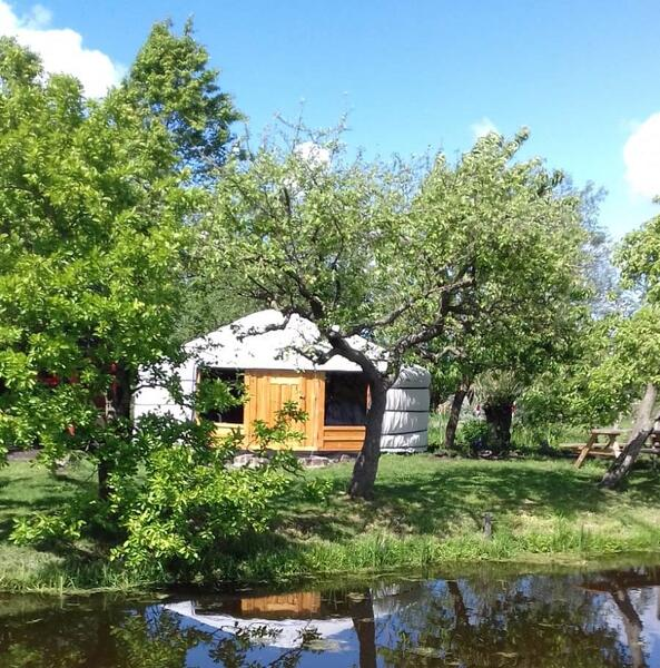 Cozy yurt in a small orchard! #11