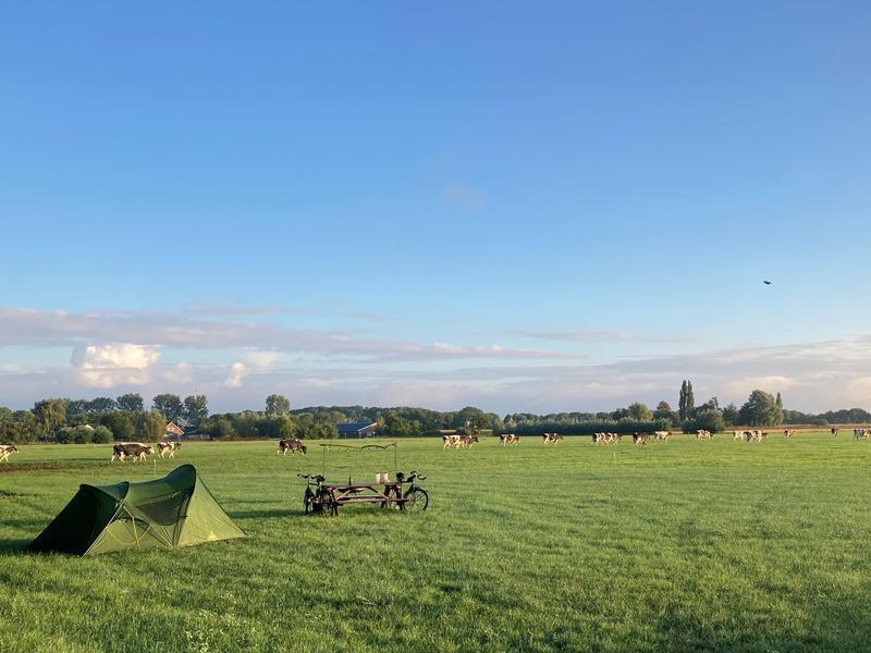 Fijne kampeerplek in het weiland  (1) #4