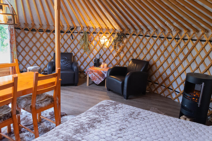 Cozy yurt in a small orchard! #5