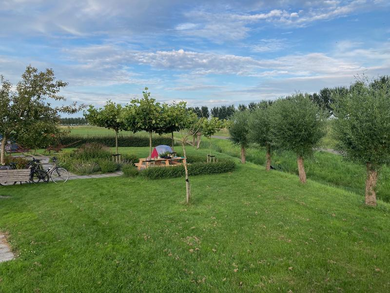Wonderful micro camping on a care farm in the polder #1