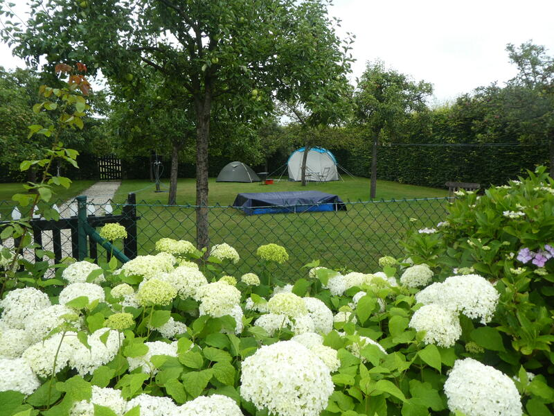 Glamping in the orchard at 'farm under the oak'. #4